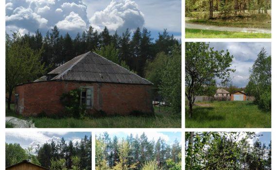 016064 * Дом в Новопокровке