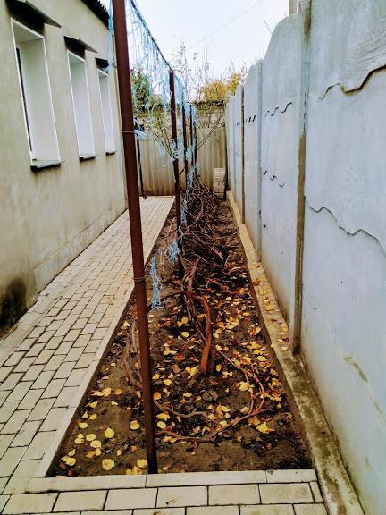016037 * Дом Новопокровка