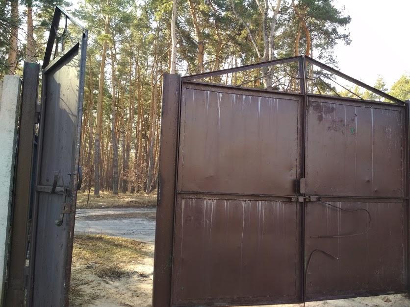 016041 * Дом в Терновой